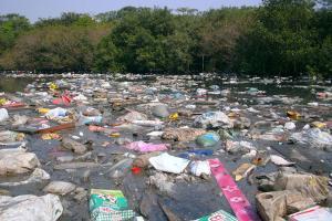 Plastiktüten veschmutzen das Wasser
